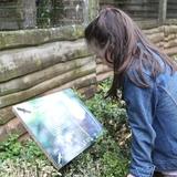 Les enfants découvrent la vie des oiseaux
