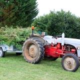 Chaque année, nous taillons nos 800 végétaux que nous avons plantés...