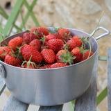 Les premières fraises du mois de mai...