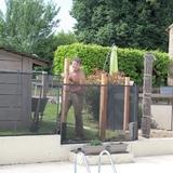 Notre nouveau chantier, réaménagement des contours d'une piscine.