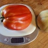 Une de nos grosses tomates coeur de boeuf, plus de 700gr!