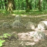 La préhistoire au détour des chemins