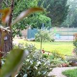 Devant le gite accès vers la piscine et le domaine.