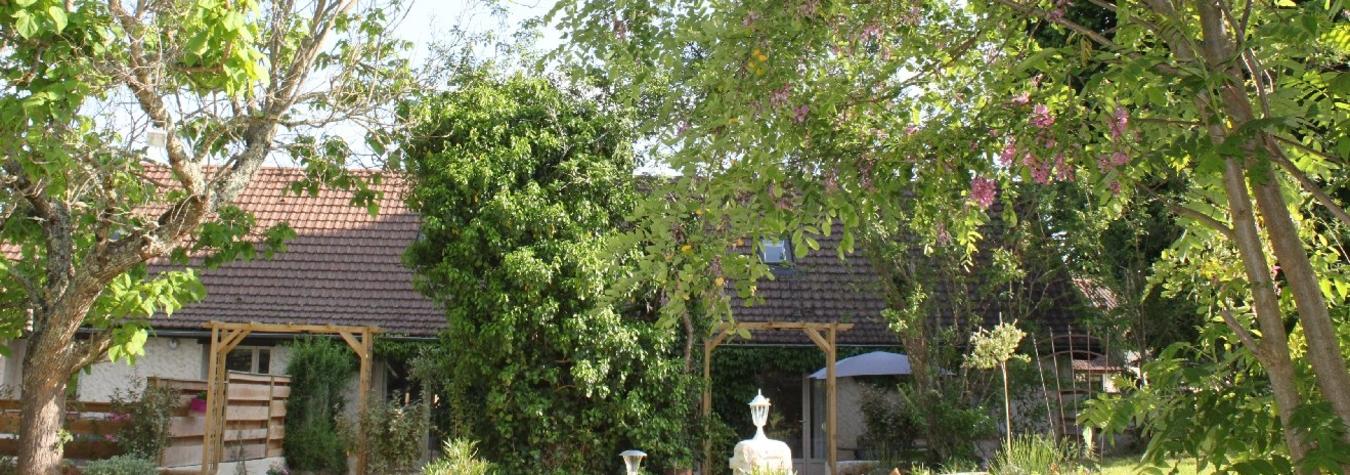 Les acacias colorent le ciel du Quercy